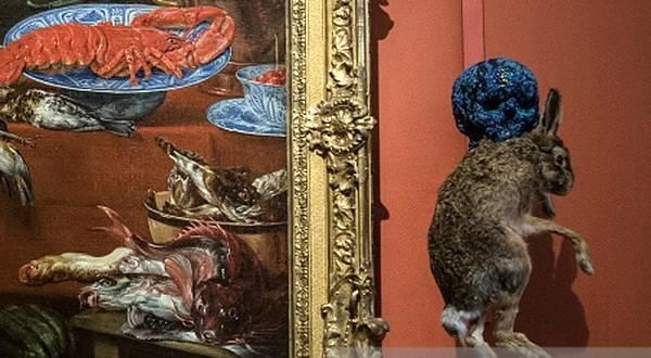 ВЭрмитаже усомнились вобразованности противников выставки Фабра