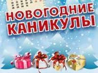 Россияне стали меньше ходить в гости, в рестораны, бывать на природе, но всё равно довольны новогодними каникулами